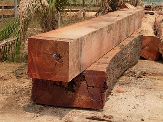 madeira maçaranduba